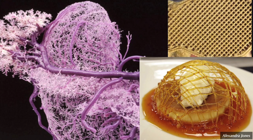 3D-печать сахаром помогает воспроизводить сосуды в искусственных живых тканях