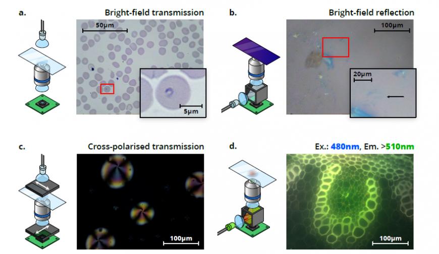 OpenFlexure: бюджетный микроскоп с 3D-печатной конструкцией