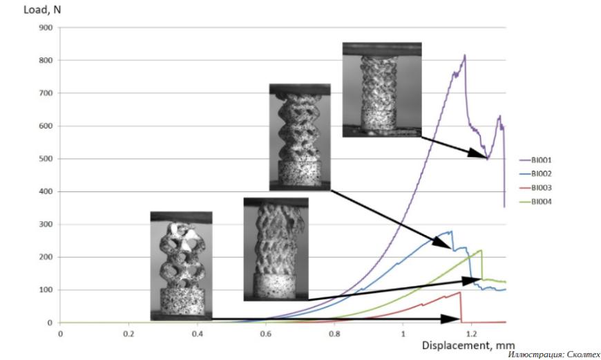 Ученые Сколтеха представили новый метод проектирования 3D-печатных костных имплантатов