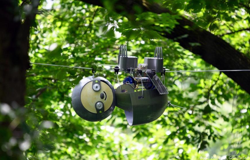 В Атланте проходит испытания 3D-печатный робот-ленивец