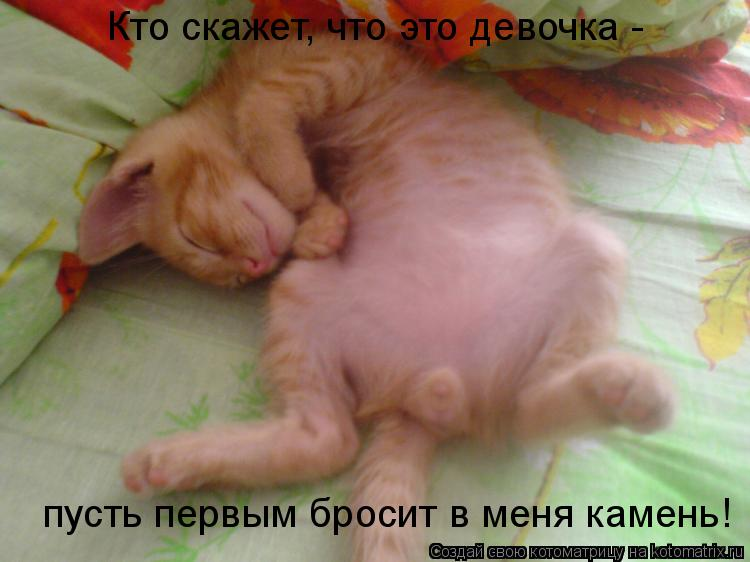 Если во сне вы взяли в дом котят - готовьтесь к визиту неприятных гостей и множеству досадных хлопот.