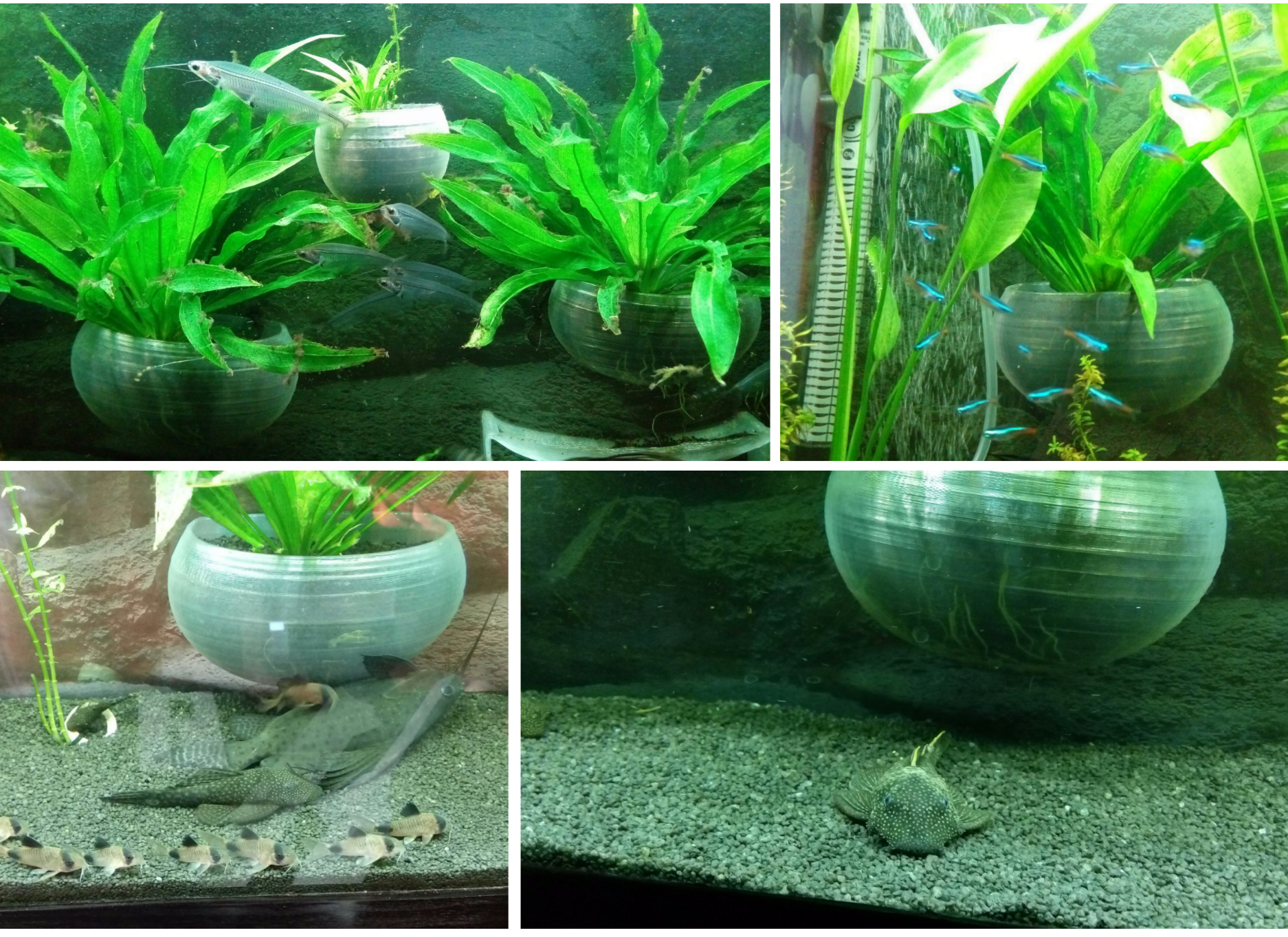 Распылители воздуха для аквариума своми 84