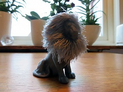 Lion with hair